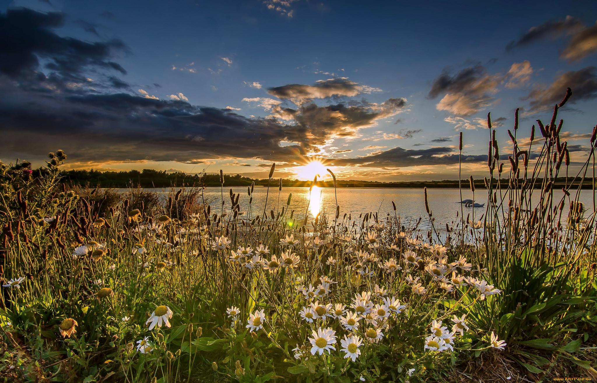 Картинка лето закаты и рассветы